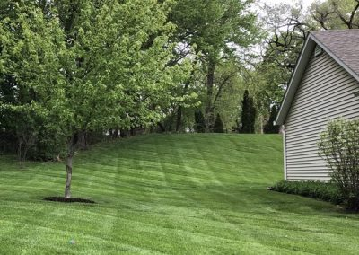 Landscape Maintenance - Scott's Landscapes Mowing